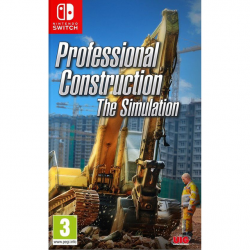 PROFESSIONAL CONSTRUCTION: THE SIMULATION-SWITCH