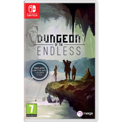 DUNGEONS OF THE ENDLESS-SWITCH